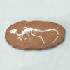 공룡화석발굴