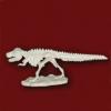 미니공룡뼈발굴 - 티라노사우루스