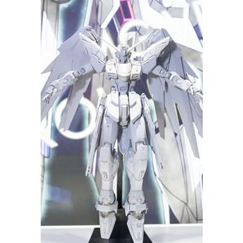[MG]1/100 ZGMF-X10A Freedom Gundam 프리덤 건담 Ver.2.0