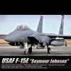 1/48 USAF F-15E 미공군 시모어 존슨